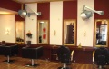 2. Bild Hairdreams-Studio